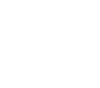 Wellenstein Fundus